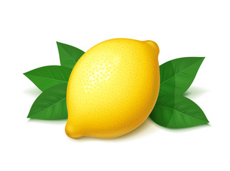 Ripe, juicy lemon with green leaf. Realistic tropical fruit. Fototapete