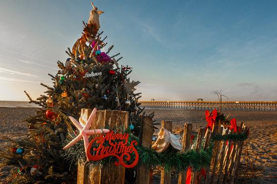 decorated Christmas tree on beach