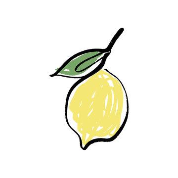 Vector lemon one line art logo in color