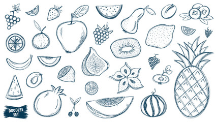 Fruits doodles set. Tropical fruit. Summer. Berry. Scribble collection. Quirky sketches. Grape. Blueberry. Carambola. Watermelon. Pineapple. Strawberry. Figs. Pear. Kiwi. Melon. Citrus. Smoothie.