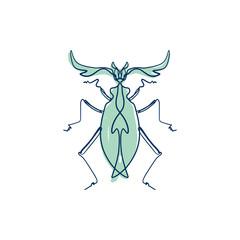 Hand drawn elegant grunge beetle sketch art