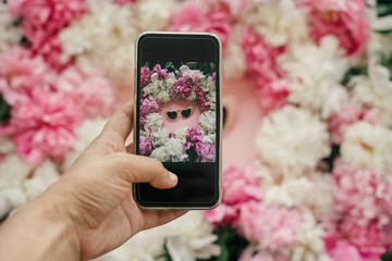Hand holding phone and taking picture of stylish heart shape pink sunglasses with pink and white peonies on pastel pink paper, flat lay. Stylish hello summer image. Instagram blogging concept