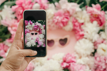 Instagram blogging concept. Hand holding phone and taking photo of stylish girly flat lay of heart shape pink sunglasses with pink and white peonies on pastel pink paper. Hello summer