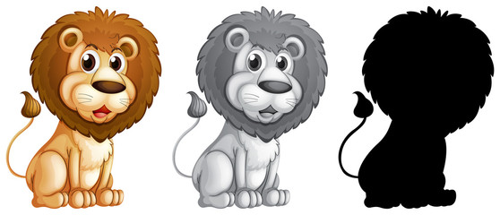 Printed roller blinds Kids Set of male lion character