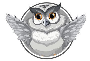 A grey owl banner