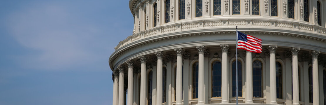 US Capitol 16 (Banner)