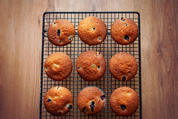 Blueberry muffins on a wire rack, against an oak wooden floor background