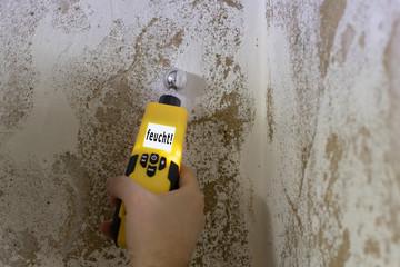 Obraz Mit einem Feuchtigkeitsmessgerät wird eine Kellerwand gemessen. Das Messgerät zeigt an, dass die Wand feucht ist. - fototapety do salonu