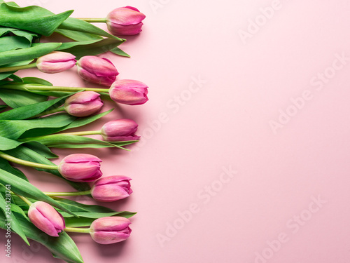 Delicate pink tulips on lightpink background.