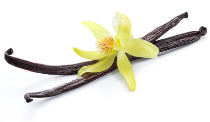 Spoed Fotobehang Kruiderij Dried vanilla pods and orchid vanilla flower on white background.