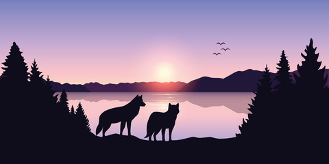 two wolves look to the lake and mountain landscape at sunrise vector illustration EPS10