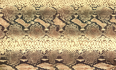 Snake skin texture. Reptile seamless background for design.