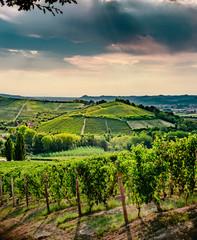 Barolo e colline Monferrato