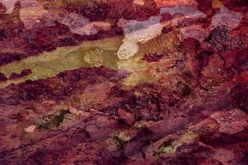 Abstrakte Textur aus überlagenden Naturfotos in herbstlichen Farbtönen