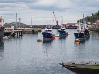 Fishing boats moored in the port of Bermeo on a cloudy day