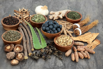 Adaptogen food selection with herbs, spice, fruit and supplement powders. Used in herbal medicine to help the body resist the damaging effect of stress and restore normal physiological functioning.