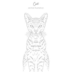 Symmetrical Vector portrait illustration of cat. Hand drawn ink realistic sketching isolated on white. Perfect for logo branding t-shirt coloring book design.