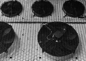 Ventilation fans under protective metal mesh