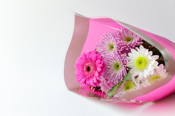 Chrysanthemum moms flower bouquet in a pink wrap on white background copy space