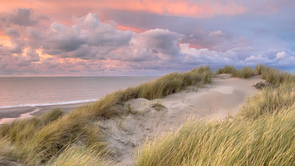 Wall Mural - View from dune on North Sea