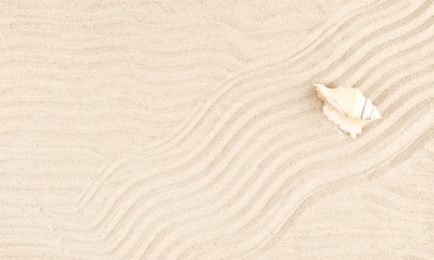 Beach sand texture background. Flat lay, top view, copy space