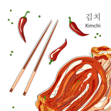 Kimchi (translate from South Korean - Salted and fermented cabbage). Korean, Japanese, China cuisine. Napa Cabbage. Vector illustration.