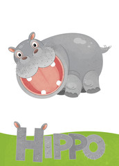 cartoon scene with hippo card on white background with name of animal - illustration for children