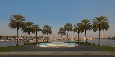 Wall Mural - Palm trees surround fountain at the South Yacht Basin of St. Petersburg, Florida at twilight