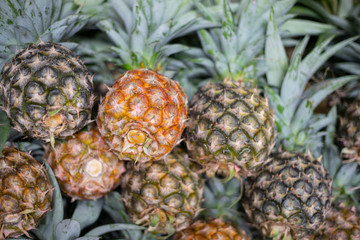 Fresh pineapple pile closeup. Ripe pineapple bunch for sale on tropical farm market. Exotic fruit photo for background