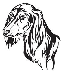 Decorative portrait of Dog Saluki vector illustration