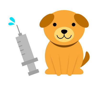 犬の予防注射