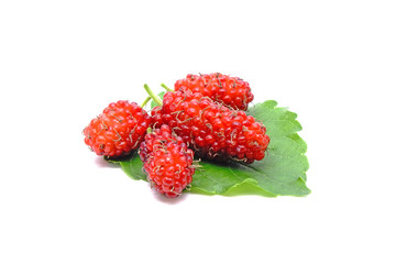 Mulberry fruit : Red mulberry with green leaves isolated on white background.