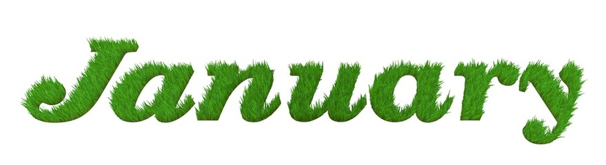 """january"" in 3d decorative word with grass effect"