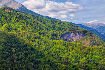 beautiful mountain covered by green forest