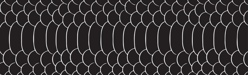 Seamless monochrome black and white pattern. Vector. Texture snake. Fashionable print. Fashion and stylish
