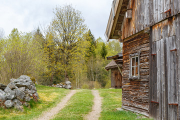 Wall Mural - Farm road at an old timber barn in the spring