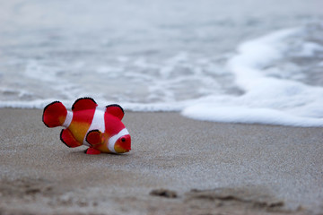 toy fish on the beach peep with the influx of the sea