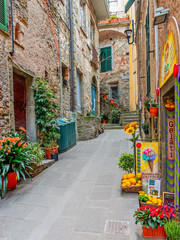 Wall Mural - Beautiful alley in Liguria, Old town Vernazza, Italy, Europe
