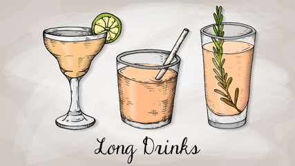 Vector Illustration of Cocktails Menu Template with Cocktail Glasses Sketch Style