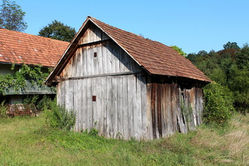 Unused old abandoned dilapidated wooden barn with boarded entrance and cracked boards surrounded with high uncut grass and trees with rusted agricultural equipment and old house in background