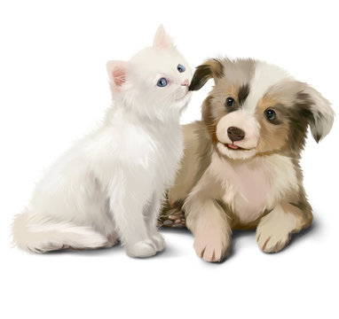 Kitten pulls the puppy by the ear