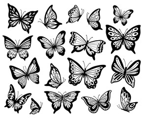 Drawing butterflies. Stencil butterfly, moth wings and flying insects isolated vector illustration set