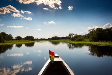 Travelling on a boat through the pampas near Rurrenabaque, Bolivia