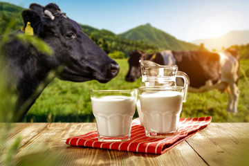 Fototapete - Fresh milk on wooden desk and spring landscape with cows and mountains