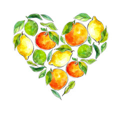 watercolor hand-drawn citrus: lemon, lime, tangerine, orange, arranged in the shape of a heart. Great for packaging juices, ice cream and other citrus fruit products