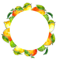 watercolor hand-drawn frame of citrus: lemon, lime, tangerine, orange.  Great for packaging juices, ice cream and other citrus fruit products