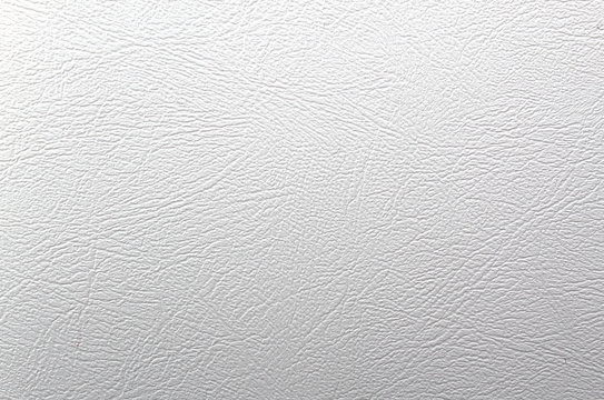 Texture leather white background
