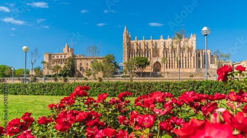 Wall mural Landscape with Cathedral La Seu, Palma de Mallorca islands, Spain