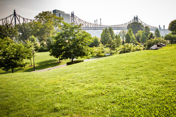 Beautiful Roosevelt Island park with Manhattan, New York City and Queensboro bridge in background during sunny summer day