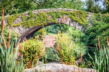 Gapstow bridge with beautiful greenery in Central Park, New York City during summer sunny day